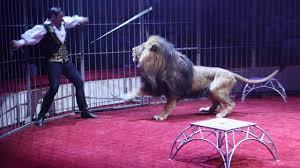 Un dompteur avec un lion